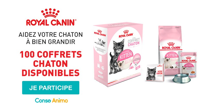Distribution de 100 coffrets chaton pour un bon départ avec votre compagnon