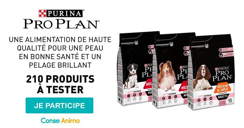 Testez les croquettes pour chien Pro Plan® Optiderma !