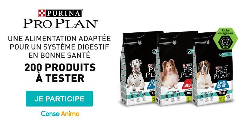 Testez les croquettes pour chien Pro Plan® de Purina® !