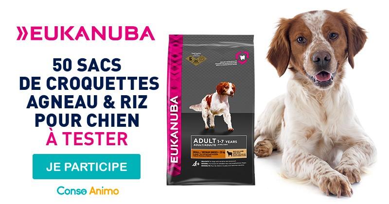 Testez les croquettes à l'agneau pour chien Eukanuba !
