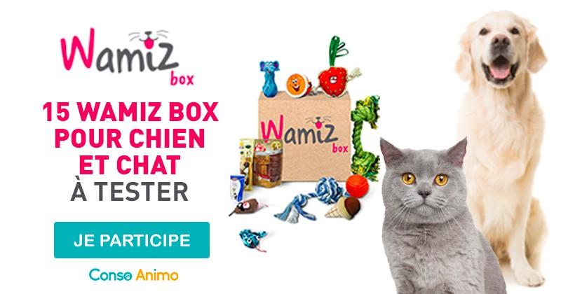Testez la Wamiz Box pour chien ou chat !