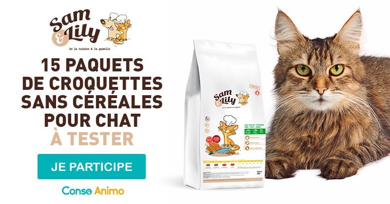 Testez les croquettes sans céréales pour chat Sam & Lily !