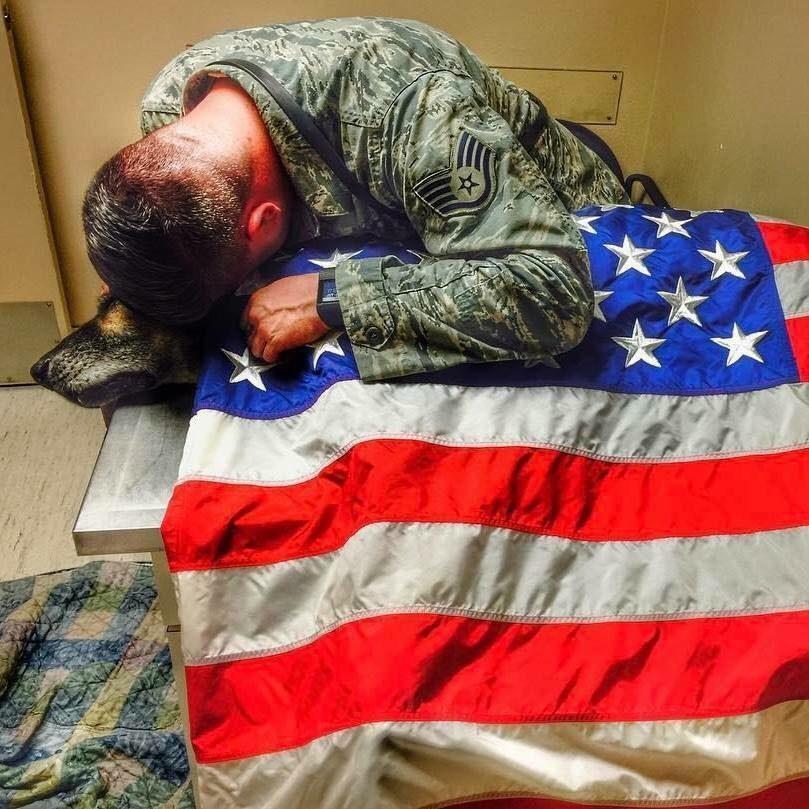 soldat avec son chien mourant