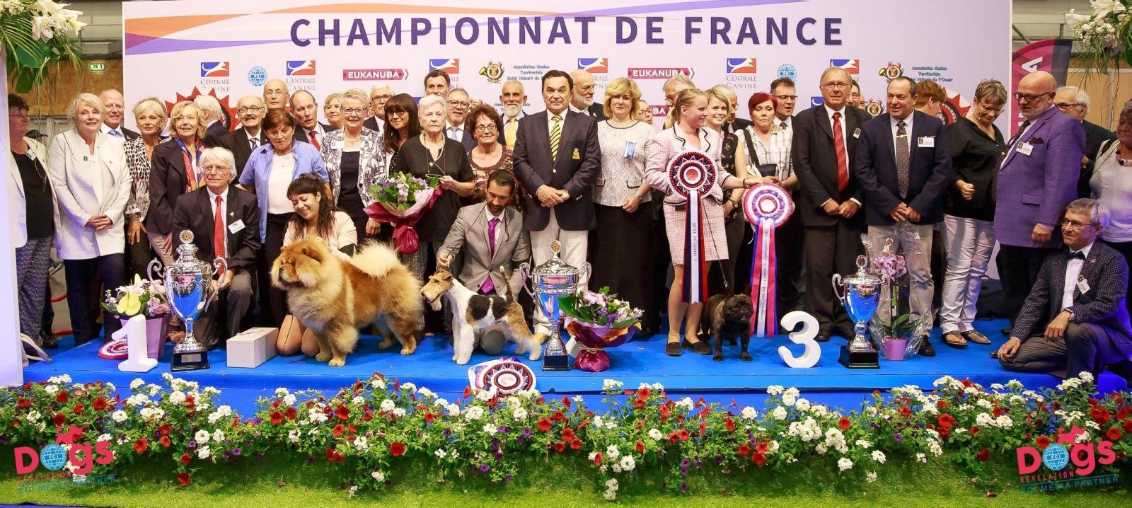 championnat france chien races 2017