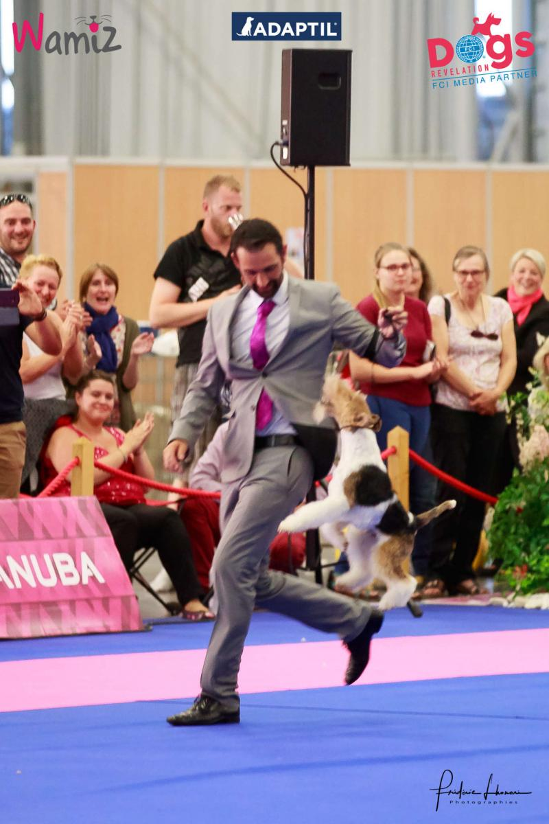 championnat france chiens de race 2017