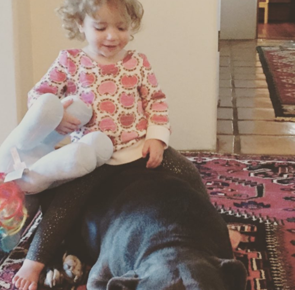 Jon Bernthal pitbull