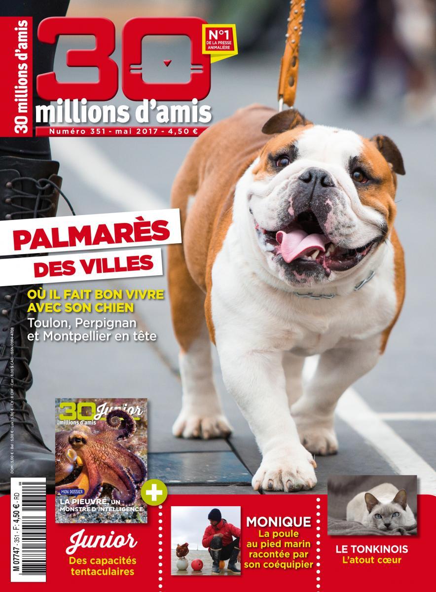 Toulon, élue ville de France la plus accueillante pour les chiens !