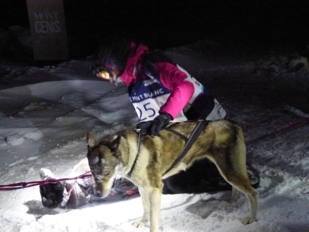 câlins chien/musher odyssée chiens de traîneau