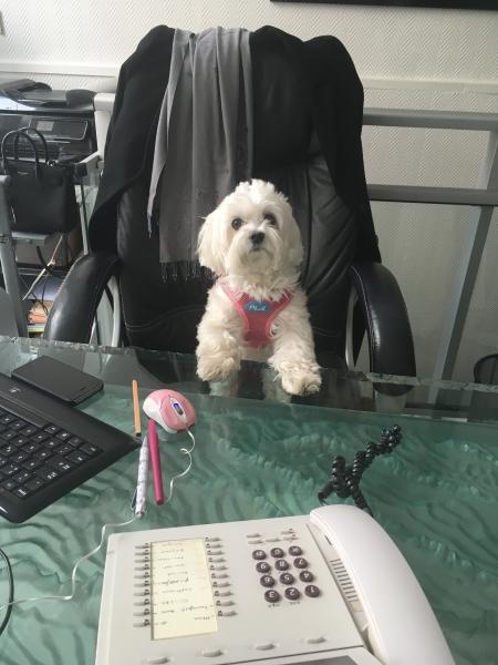 nana au bureau