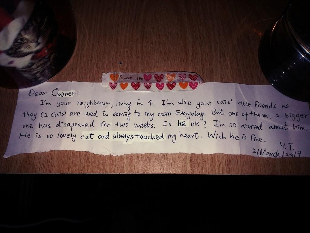 lettre pour le chat décédé