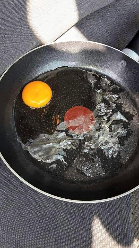 Cet œuf qui cuit dans une voiture va vous convaincre qu'il est dangereux d'y laisser votre chien