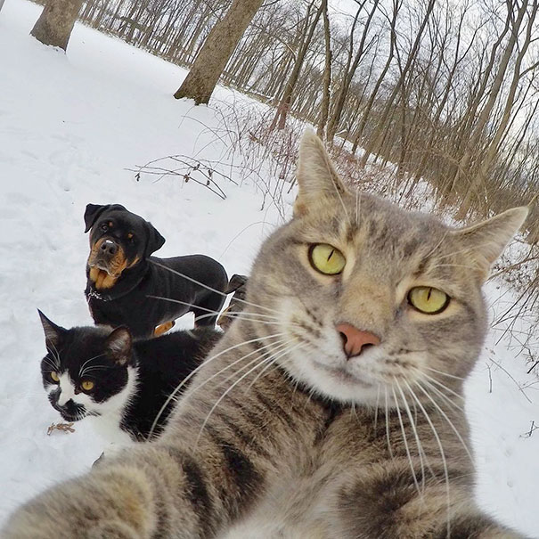 manny chat selfie