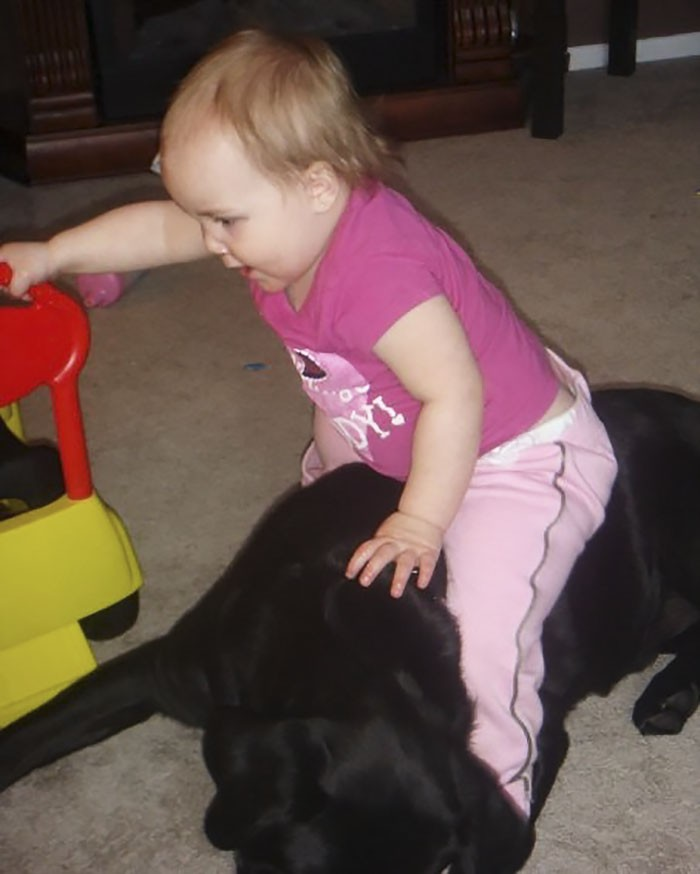 bébé jouer chien
