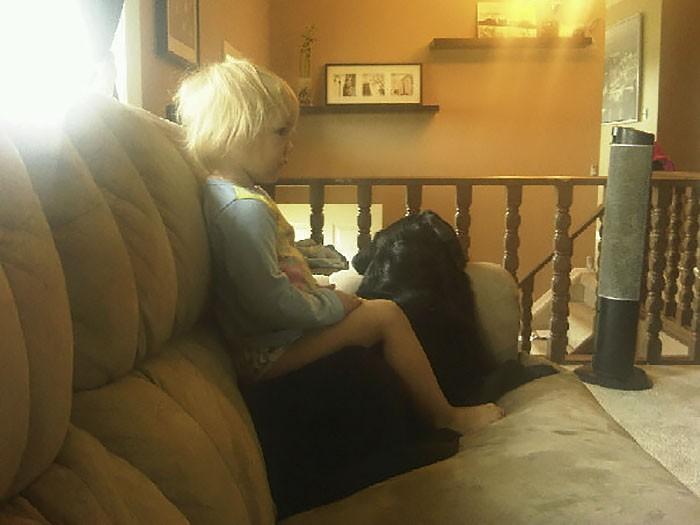 bébé tv chien