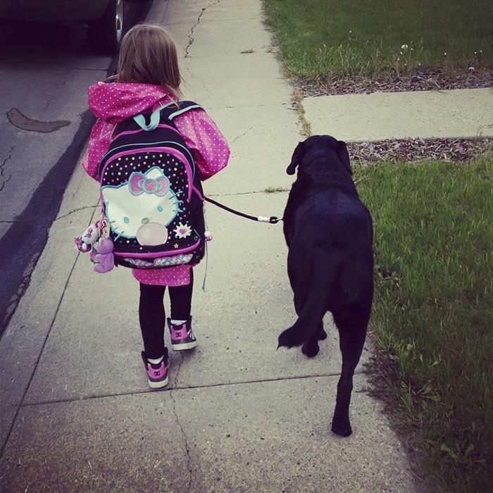 enfant chien école