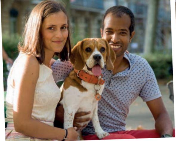 MJ The Beagle