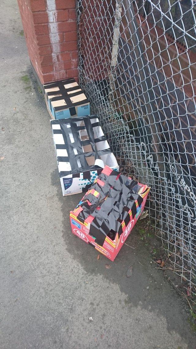 cartons devant refuge