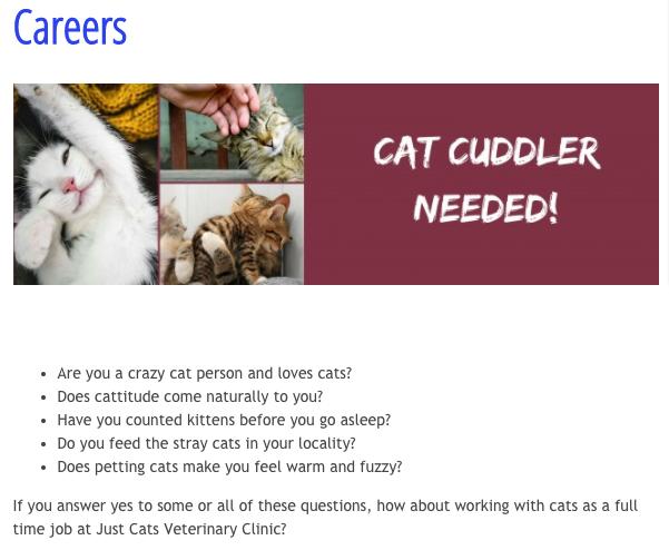 Cette clinique vétérinaire cherche une personne pour câliner des chats toute la journée