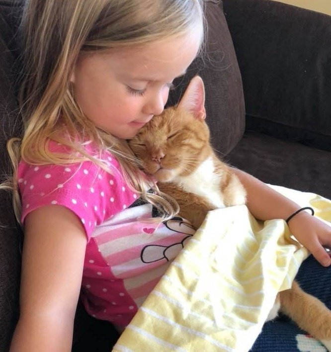 chat calin bébé