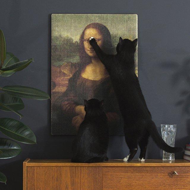 griffoire joconde chat