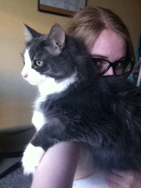 chat adoption amour