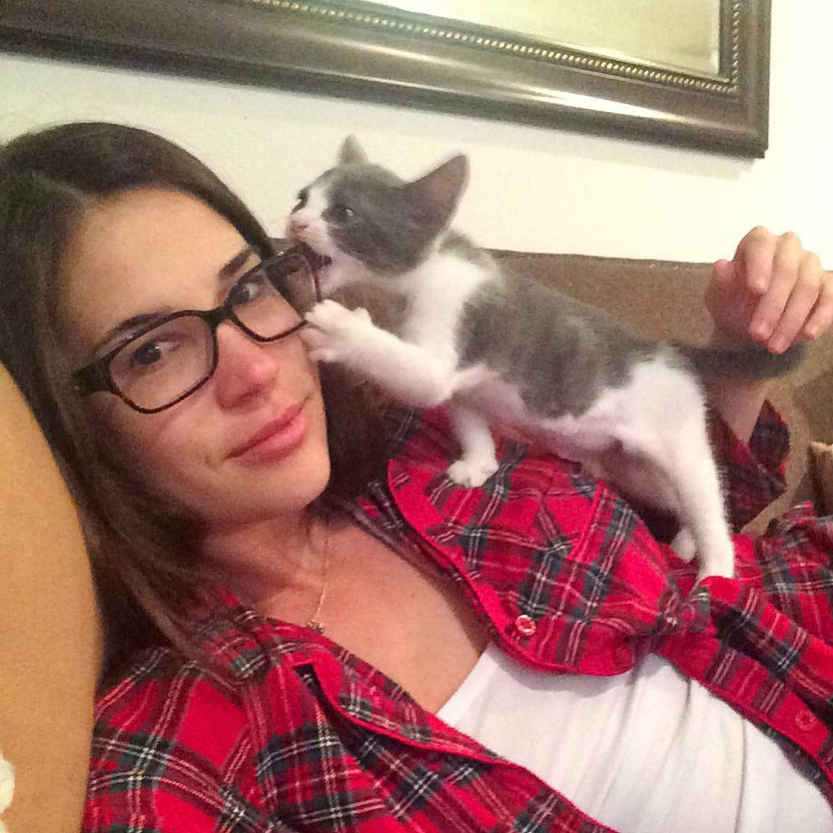 chaton sauvé