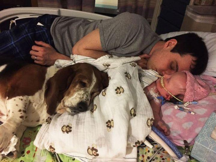 chien bébé mourant