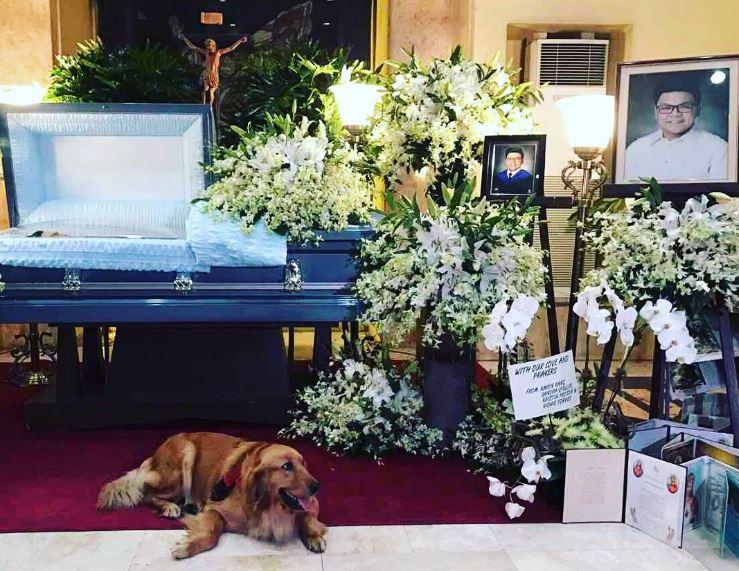 chien enterrement