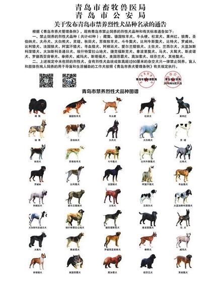 En Chine, une ville interdit d'avoir plus d'un chien par foyer
