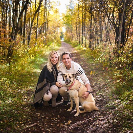 chien couple