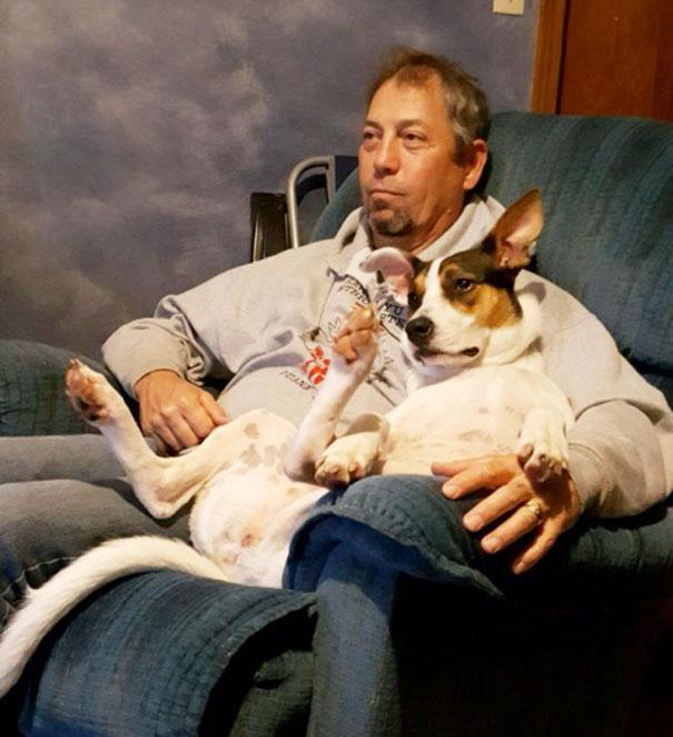 pères de famille qui ne voulaient pas de chien