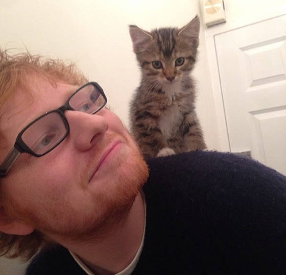 ed sheeran graham
