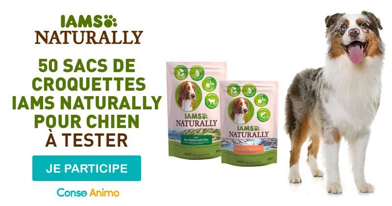 Testez les croquettes  pour chien IAMS Naturally !