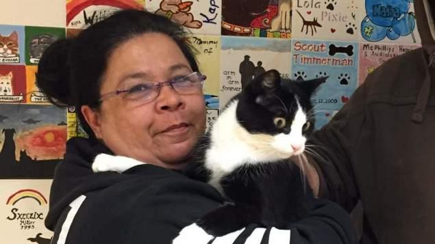 chat perdu retrouvé 12 ans après