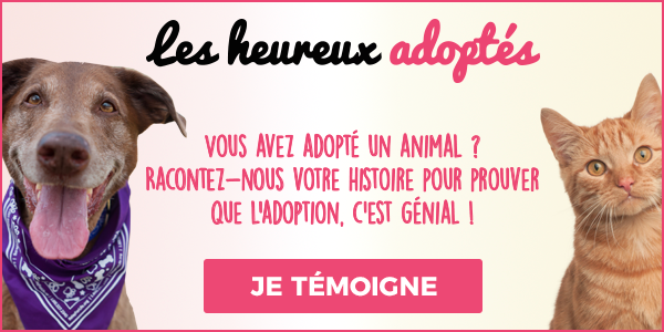 heureux adoptes