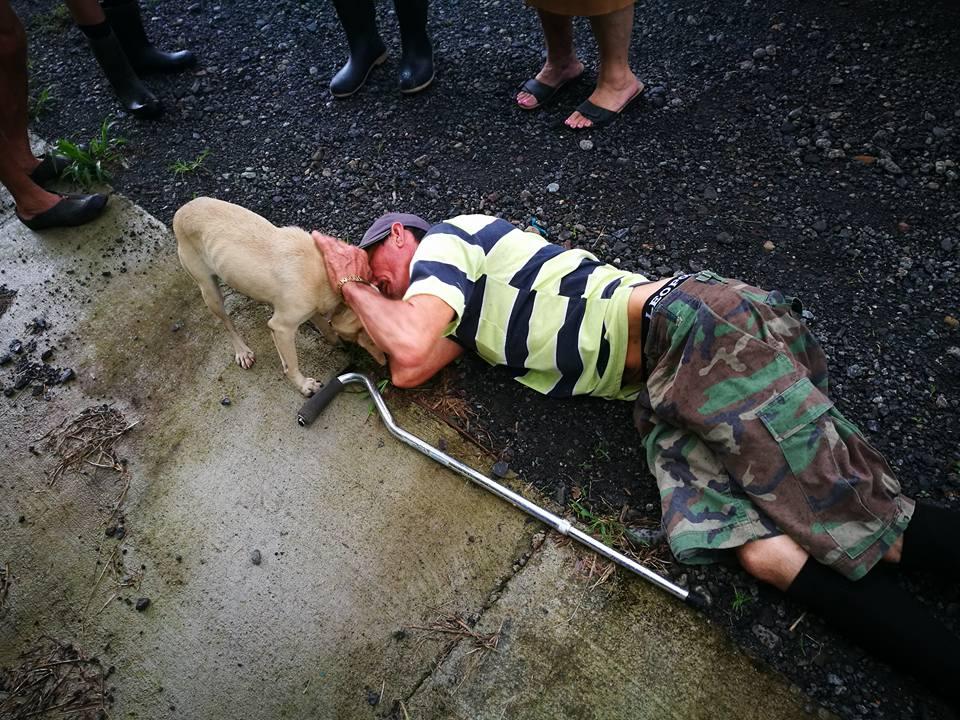 chien homme terre