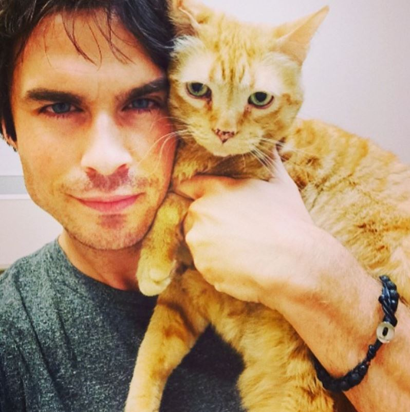 Ian somerhalder chat