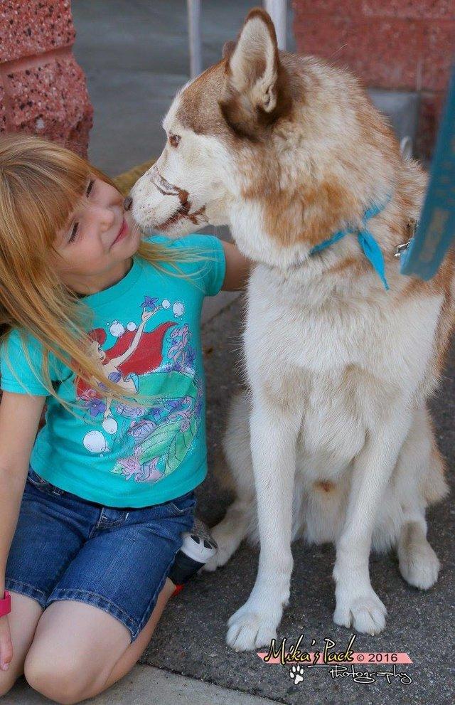 husky petite fille