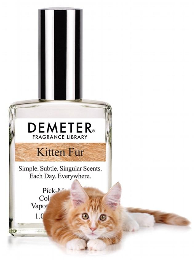 parfum chaton