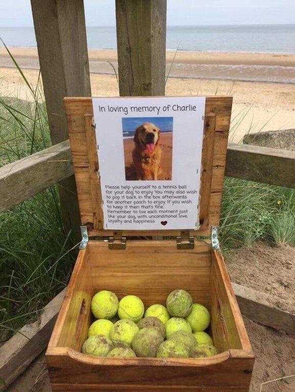 chien mémorial