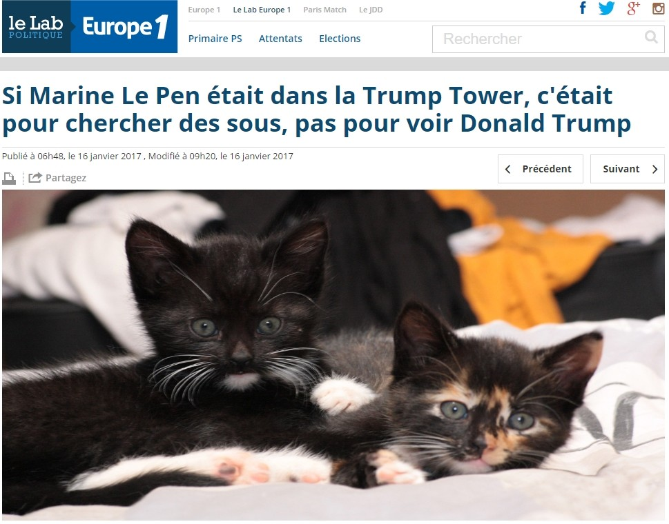 Donald Trum Marine Le Pen New York make america kittens again