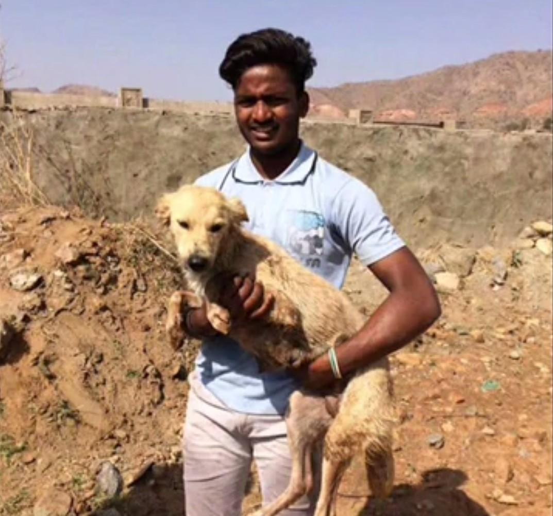 chien sauvetage inde puits