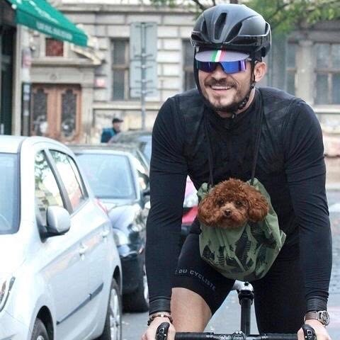 orlando bloom chien vélo