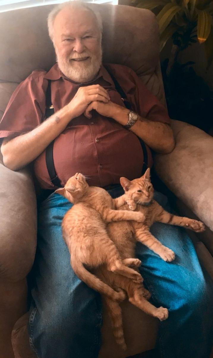 grand-père chatons roux
