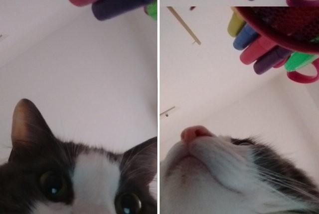 chat selfie 2