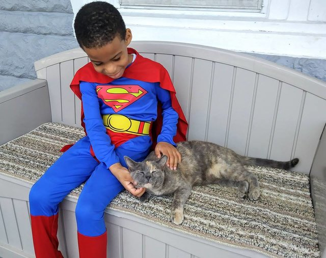 petit garçon costume superman et chat