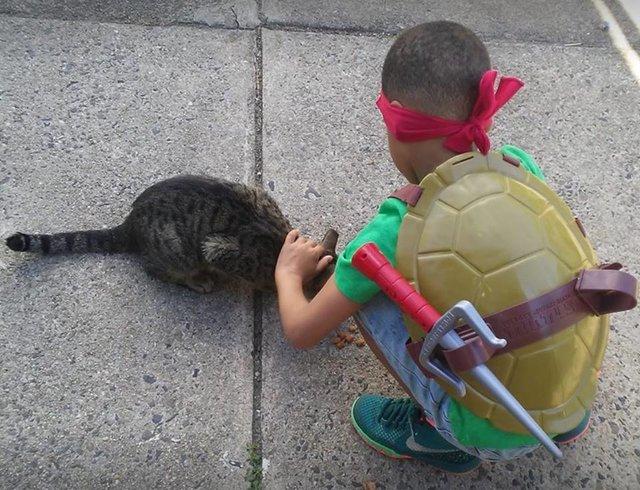 petit garçon et chat errant
