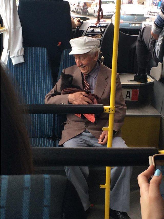 vieil homme chaton bus