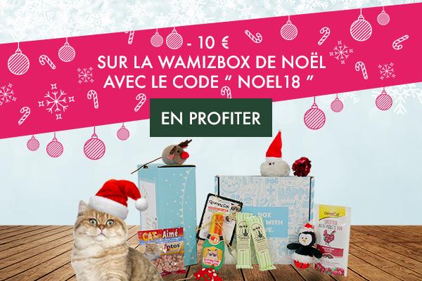 wamiz box noel